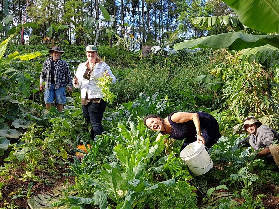 The Lighthouse Regenerative Organic Farm