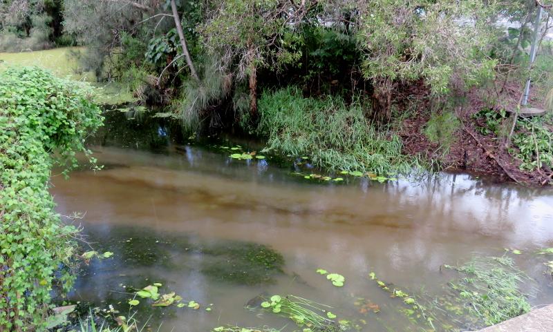 Marcoola waterways pollution